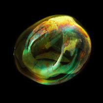 Orbital-10