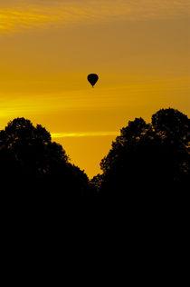 Sunset journey by Lars Hallstrom