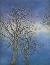 Winterzeit von Marion Huber