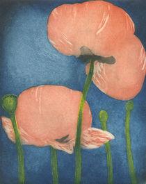 Mohn by Marion Huber