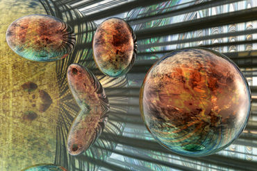 Evolution-of-spheres
