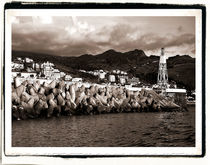 Leaving Horta, The Azores by Brian Grady