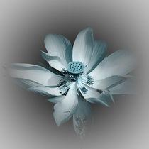 Lotusblüte - kreativ - mint/petrol/türkis von Ursula Fleiß