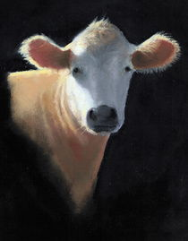 Cow Head: Oil Pastel on Black von Joyce Geleynse