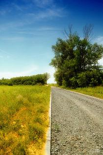road by Szantai Istvan