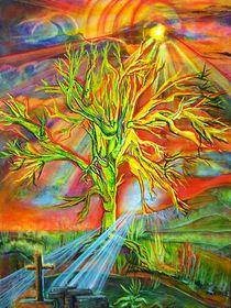 Licht ins Dunkel von Lydia  Knauf