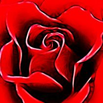 Red Rose by sharon lisa clarke