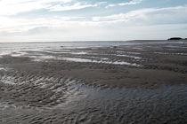 Zartblau am Wattenmeer von Pia Schneider