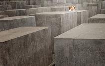Holocaust,Girls von jan pycke
