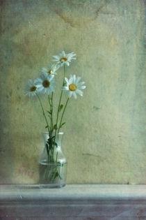 simply daisies von Priska  Wettstein