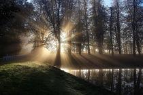 Extraordinary Sunrise by Martin Crush