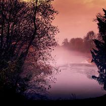 A-cold-evening-walk