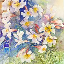 White Lilies by Elisabeth Wakeford