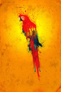 Scarlet Macaw (gold) by Colrath Furiae