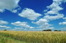weite Felder by hannes-bielefeldt