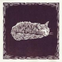 Sleeping cat von Agata Nawrot