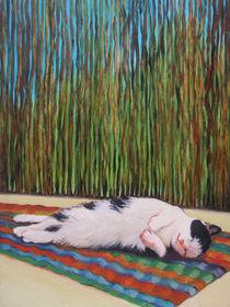 Cat sunbathing von Agata Nawrot