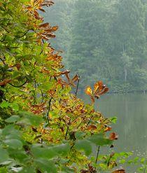 Früher Herbst von lorenzo-fp