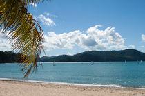 Beach von George Kay