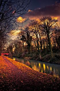 Canal Walk von Martin Crush