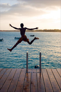 Jumping for Joy von Andrew Lever