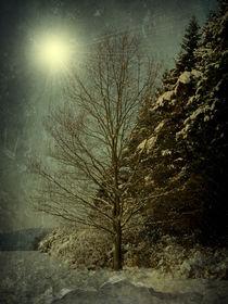 Winternacht von Elke Balzen
