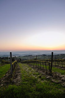 Vineyard Sunrise by Russell Bevan Photography