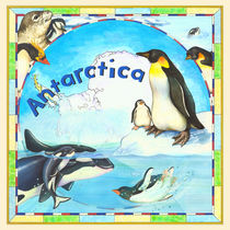 Antarctica by Lisa  McCue