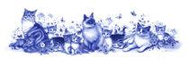 Cat Boarder von Lisa  McCue