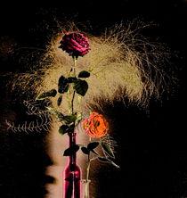 Rosengrüße -2- von Christine  Hofmann