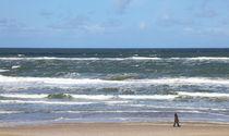 Spaziergänger am Meer von buellom