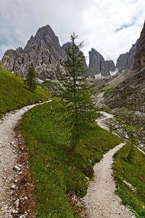 Bergwanderung von Wolfgang Dufner