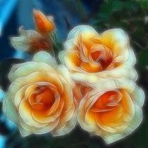 Peach Roses by Kathleen Stephens