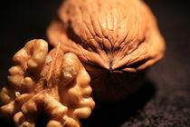 Walnut by Michael Lindegger