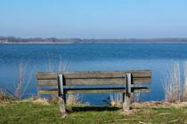 Bench at Het Twiske (recreation area) by Alex Voorloop