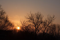 Sunrise in January by Alex Voorloop