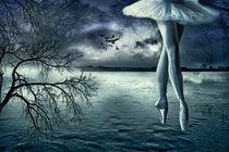 Der einsame Tanz von Susann Mielke