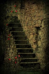 Treppe  von Elke Balzen