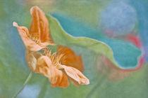 Breathing summer I von Maria Ismanah  Schulze-Vorberg