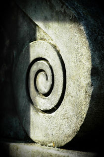 Stone Snail in Fontainebleau Castle by Katia Boitsova-Hošek