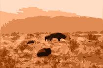 Buffalo Sunrise von Kathleen Stephens