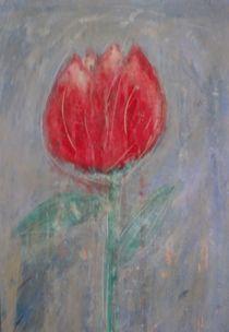 tulpe by susanna winters