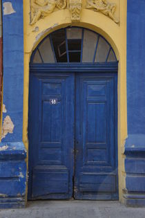 Blue Door von Milena Zindovic