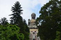 Giant Buddha Statue by James Davis