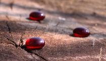Rote Steine - red stones von ropo13