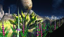 Fractalicus Gardens by David Jackson