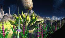 Gardens-of-fractalus2