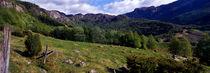 hochgebirgsweide bei brekko; rogaland fylke, norwegen von helmut-krauss-panorama