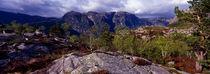 gebirge ueber dem frafjorden; norwegen, rogaland fylke von helmut-krauss-panorama
