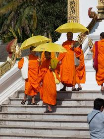 Mönche nach einem Besuch im Königspalast by pictaria